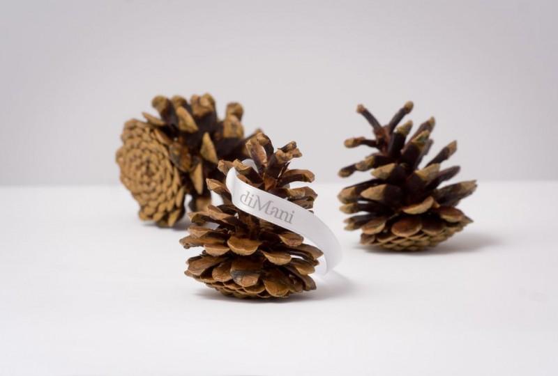 Perfumed Pine Cones